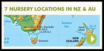 locations-callout-mini